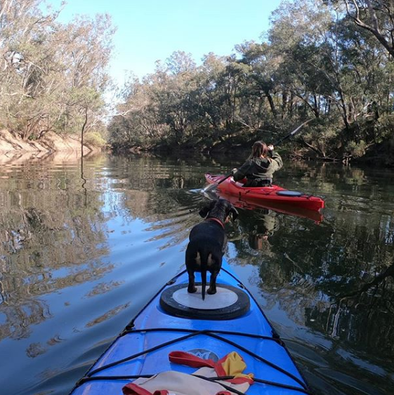 The Blackwood River in Bridgetown is a tranquil place for a paddle